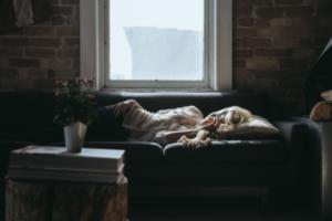 окно, диван