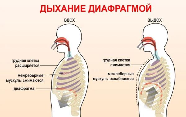 дыхательная техника